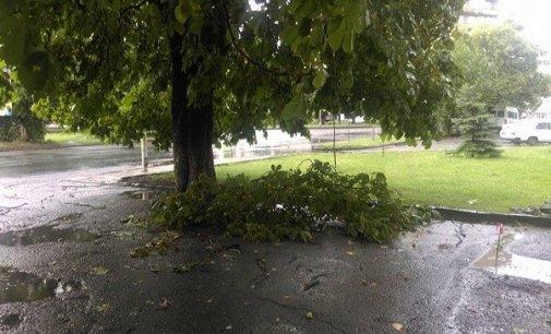 Негода на Закарпатті призвела до знеструмлення 18 населених пунктів