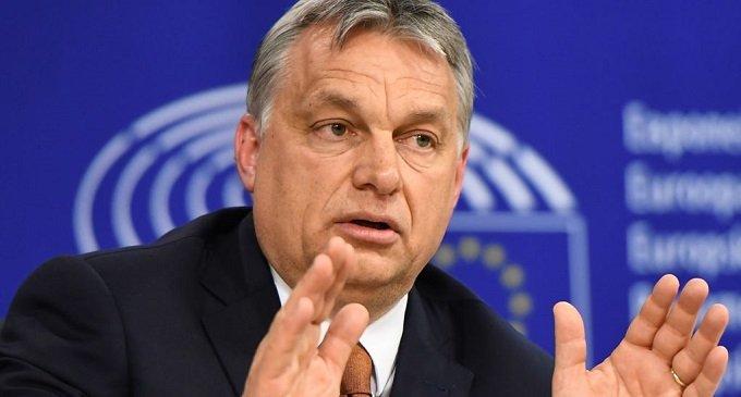 Закарпатці можуть голосувати за угорських політиків