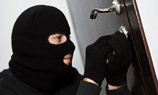 """На Ужгородщині """"на гарячому"""" були спіймані двоє крадіїв"""