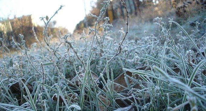 В гірських районах Закарпаття вдарили морози