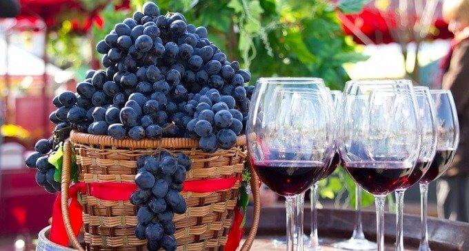 """Фестиваль вина """"Бобовищанське гроно"""" відбудеться у селі Бобовище"""