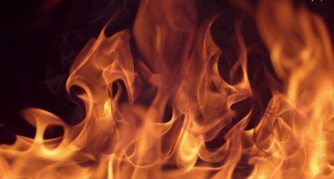 Закарпатців штрафуватимуть за спалення листя та сухотрав'я