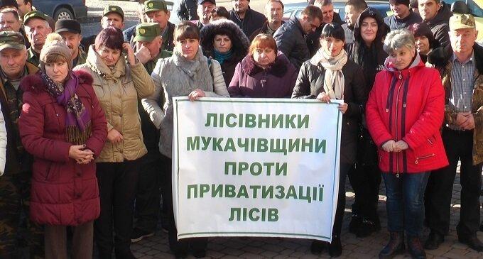Закарпатські лісівники вийшли на акцію протесту