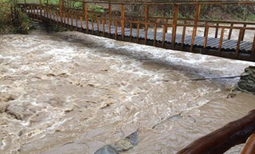 Стихія на Закарпатті: ГСЧС попереджають про паводки