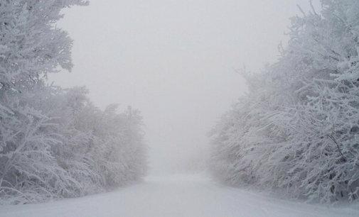У соцмережі опублікували фото зими на Закарпатті