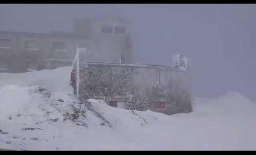 Відео: перший сніг у Карпатах