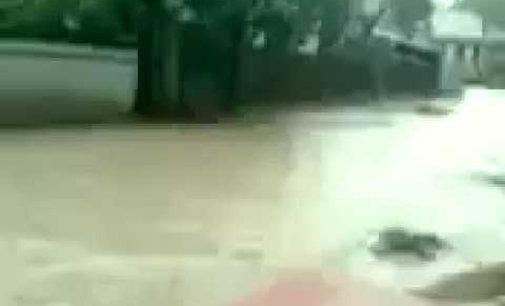 Відео: злива у Рахові: підтоплено вулиці