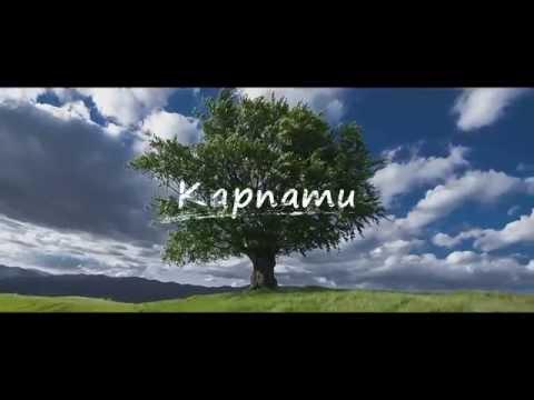 Відео дня: Неймовірні пейзажі Карпат, що зачаровують