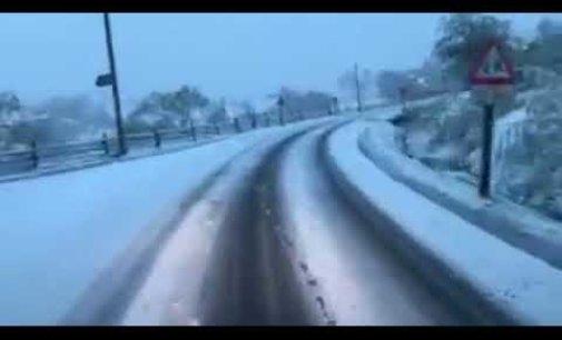 У Карпатах випав перший весняний сніг (Відео)