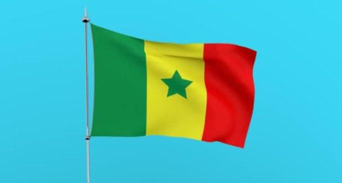 Сенегальський провідник