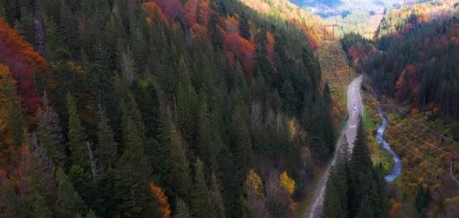 Мале карпатське коло три західні області працюють над покращенням інфраструктури