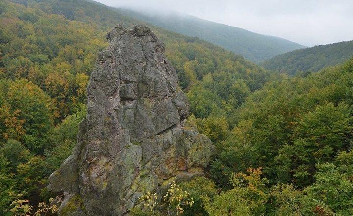 «Смерековий камінь» – візитівка Іршавського НПП «Зачарований край» (Відео)