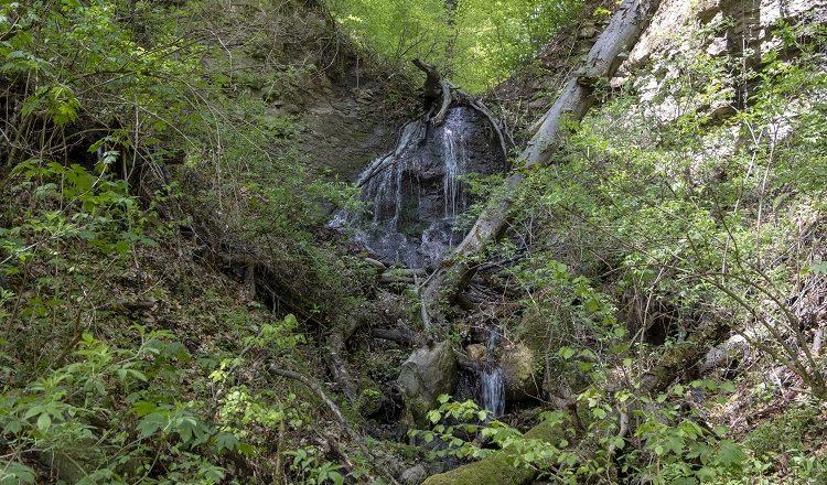 Тревел-блогер показав один із маловідомих водоспадів Іршавщини