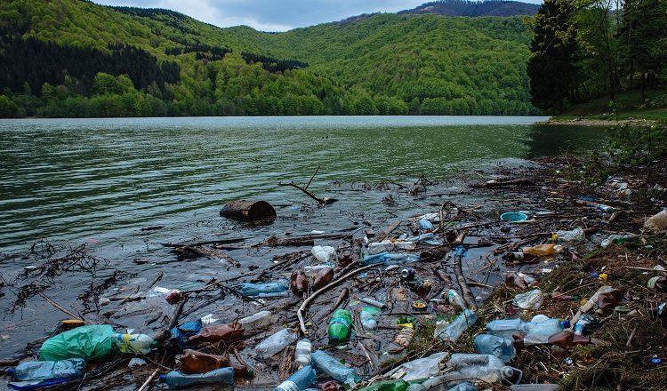 Вражаючі кадри: «Закарпатське море», береги якого вкриті сміттям (ВІДЕО)